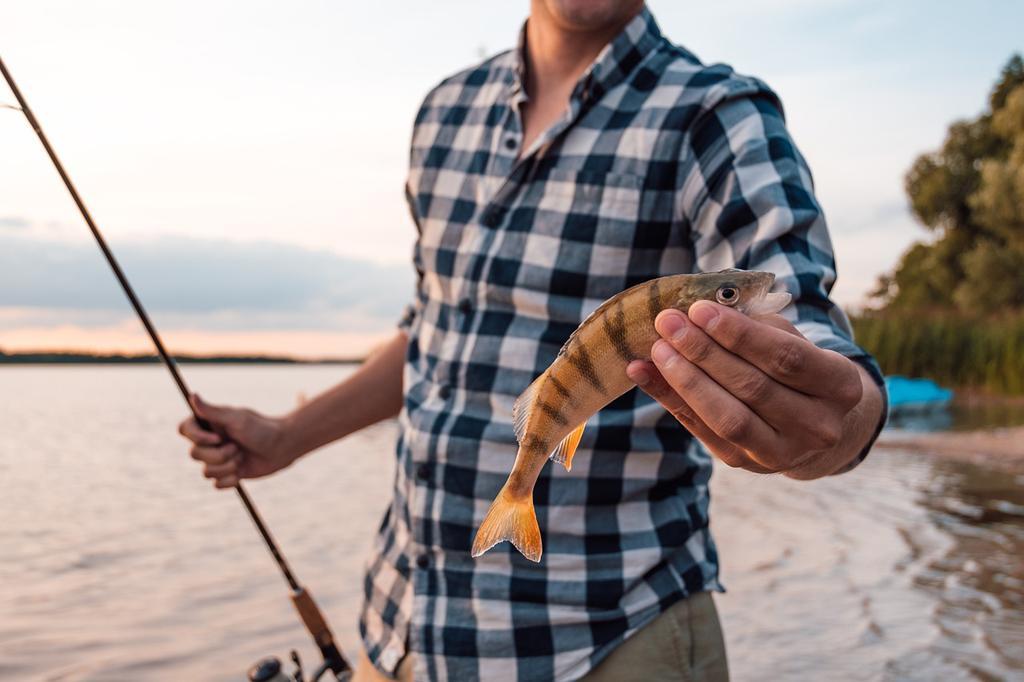 Jakie przynęty mogą skutecznie zwabić ryby?